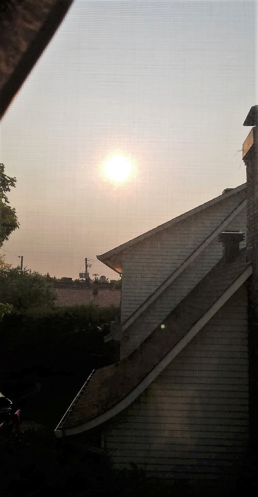 dawn-in-montreal.jpg