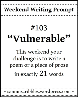 wk-103-vulnerable