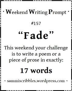 wk-157-fade